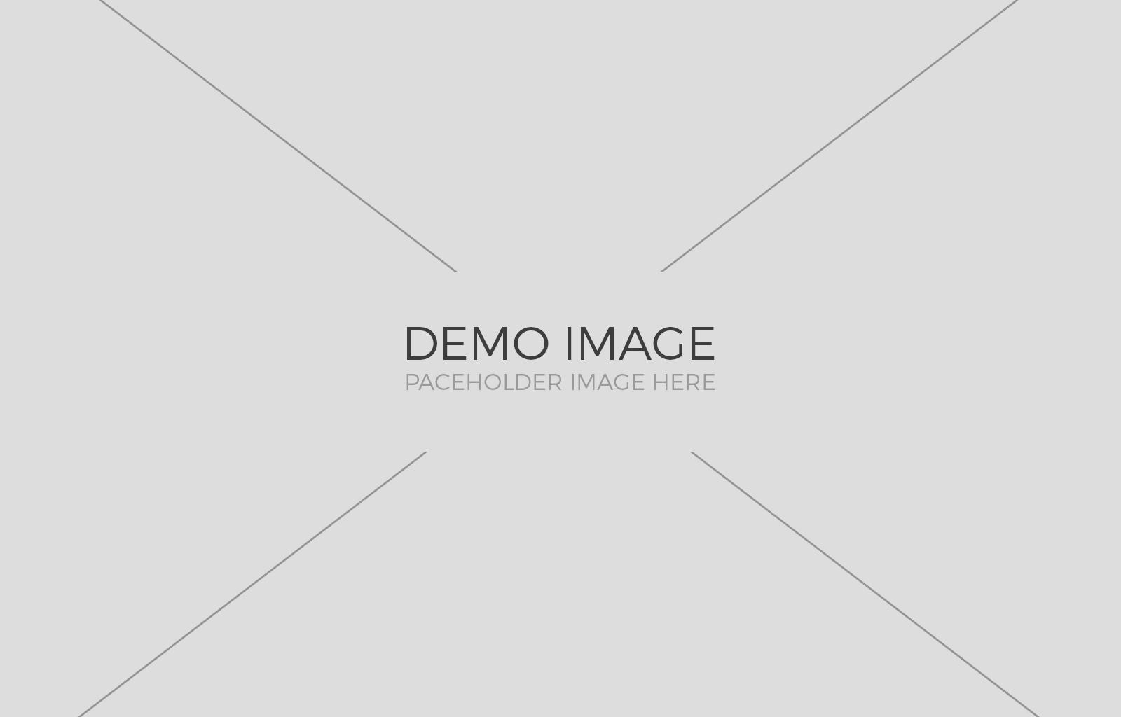 demo-img-2 3